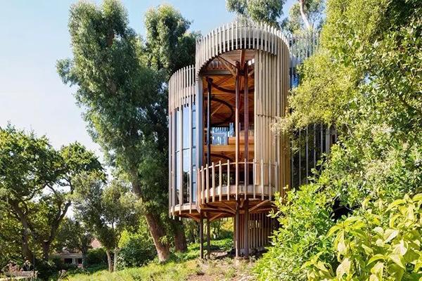 龙猫里的树屋,你难道不想住吗?